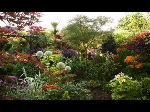 [VIDEO] AN ENGLISH COUNTRY GARDEN