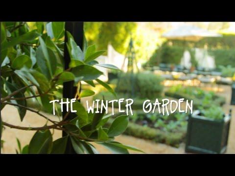 [VIDEO] BETH'S WINTER GARDEN TOUR