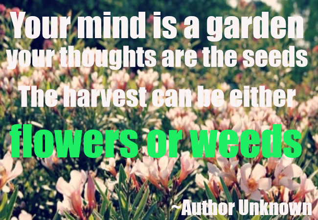YOUR MIND IS A GARDEN..