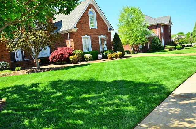 10 SPRING TASKS TO ENSURE A PERFECT LAWN