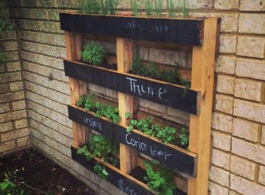 15 AMAZING IDEAS FOR A VERTICAL GARDEN