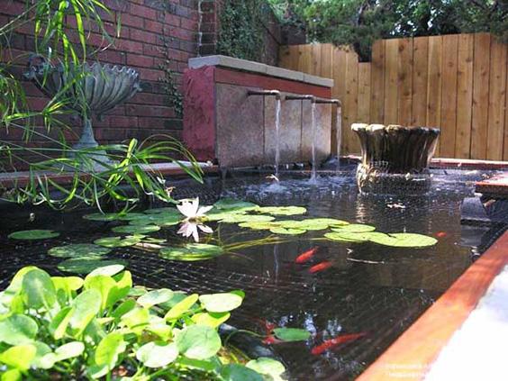 73 Ways To Create An Amazing Garden Pond