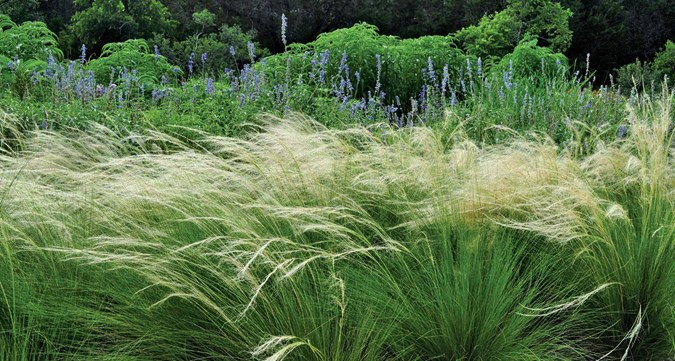 How To Create A Dry Water Garden