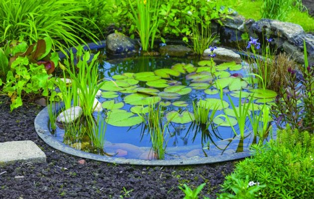 Ideas For Garden Ponds Large And Small