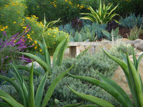 How To Mix Color, Form and Texture In The Garden