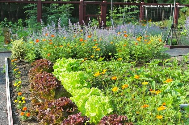 How to Grow Vegetables in an Attractive Setting