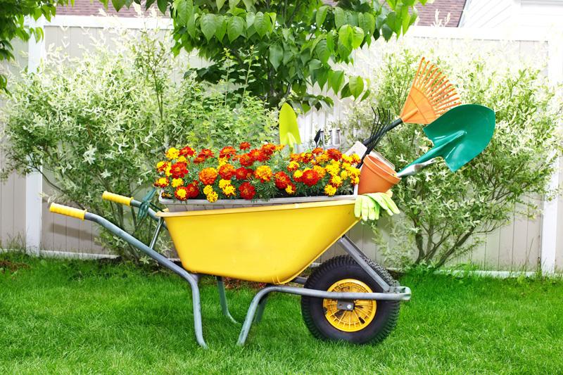 wheelbarrow planter 05