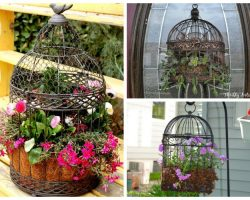 7 Unusual Uses For a Birdcage